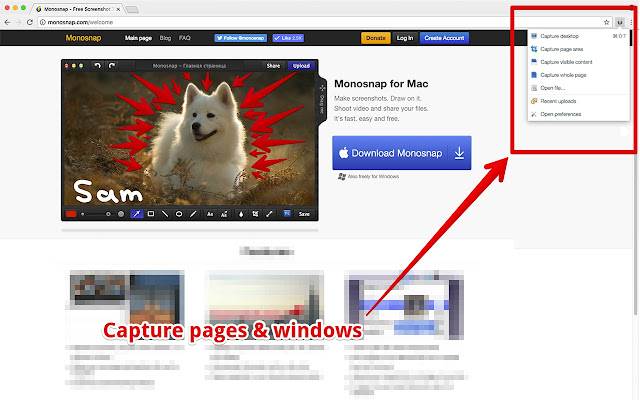 Monosnap chrome web store capture pages or blocks with the awesome smart screen capture tool ccuart Image collections