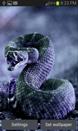 Snake Skin Live Wallpaper