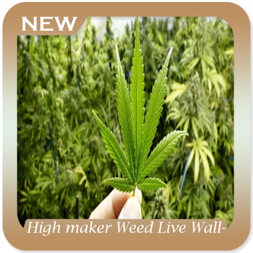 High Maker Weed Live Wallpaper Applications Sur Google Play