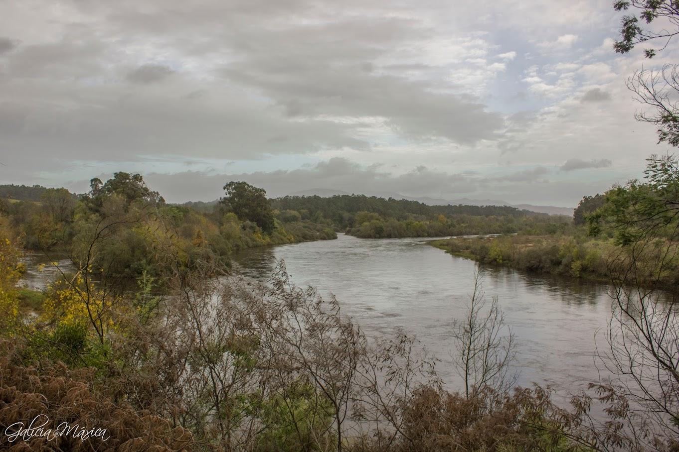 Illa de Fillaboa, río Miño