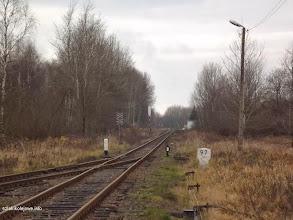 Photo: Ostatni rozjazd w zachodniej cz. stacji w kier. Leszna Górnego