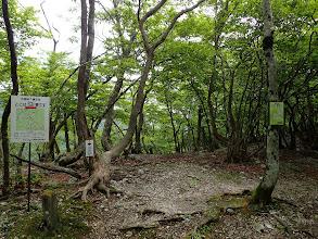 銚子岳分岐(左へ)