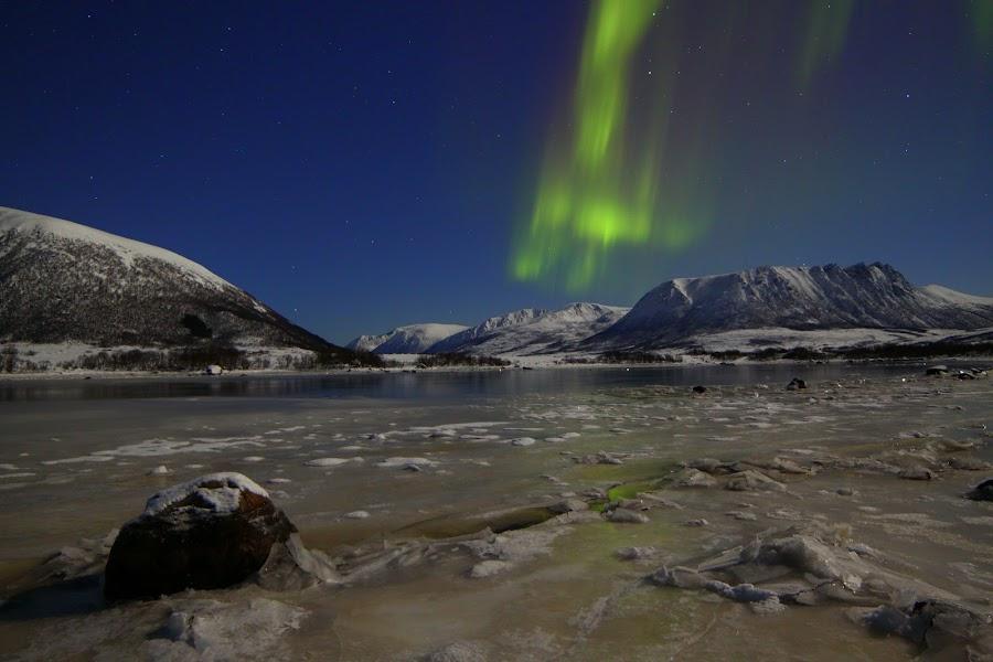 aurora boreoalis by Benny Høynes - Landscapes Starscapes ( northern, aurora, boreoalis, buksnesfjord, light )