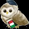 com.metalanguage.learnitalian
