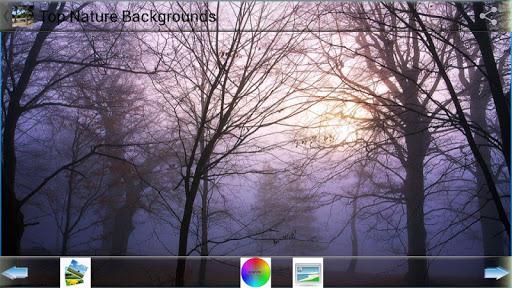 トップ自然の背景|玩娛樂App免費|玩APPs