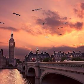 Big Ben, London , U.K.  by Inna Fangel - Buildings & Architecture Public & Historical ( u.k., london, big ben,  )