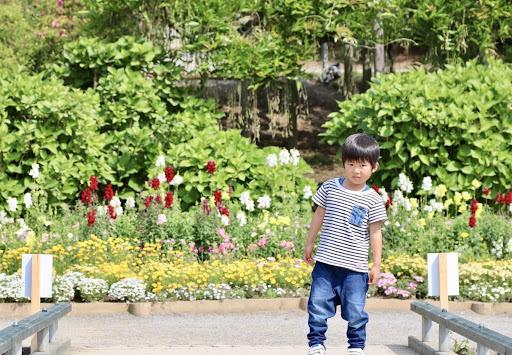 あしかがフラワーパーク「春のバラ祭り」へ!のメイン写真