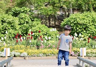 あしかがフラワーパーク「春のバラ祭り」へ!