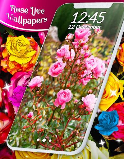 Red Rose ud83cudf39 Diamond Shine Live Wallpaper screenshots 5