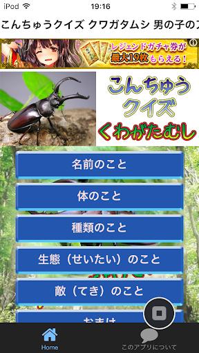 昆虫クイズ クワガタムシ 男の子のアイドルはクワガタだ!