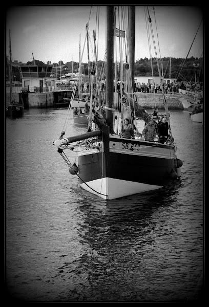 Photo: La suite dans l'album :  Le port de Paimpol - 03 Août 2012  https://picasaweb.google.com/101379764203309370306/LePortDePaimpol03Aout2012?authuser=0&feat=directlink