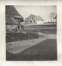 Photo: W oddali stara szkoła w Rogoźniku.