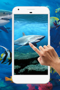 Shark Water Ripple Live Wallpaper 5