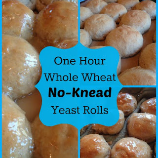 One Hour Whole Wheat Yeast Rolls (No Kneading Required) Recipe
