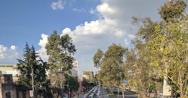 Laatste dagen in Mexico-stad · 38 nieuwe foto's toegevoegd aan gedeeld album
