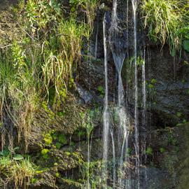 Mini waterfall by Cesare Morganti - Nature Up Close Water ( water, nature, green, waterfall, nature up close,  )