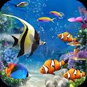 Lively Aquarium Fish Theme icon