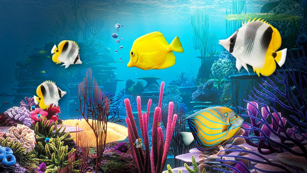 Acuario fondos animados aplicaciones android en google play for Fondos animados 3d