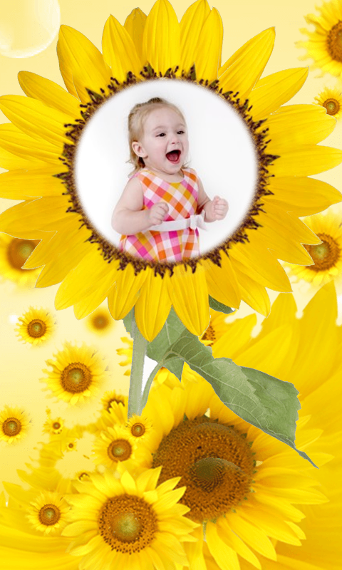 sunflower frames photo editor screenshot - Sunflower Picture Frames