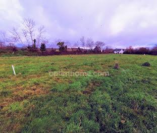 terrain à Langolen (29)