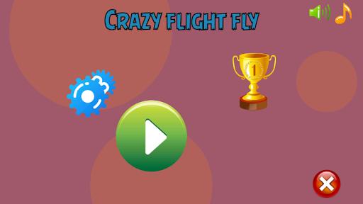 Crazy Flight Fly