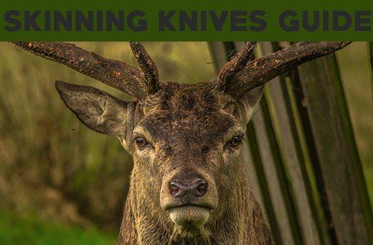 header skinning knives