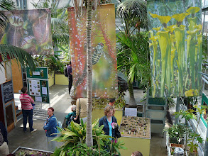 Photo: The EEE 2007 at the Hortus Botanicus Leiden.