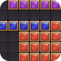 Block Puzzle 2020 icon