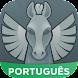 Cavaleiros Amino para Saint Seiya em Português
