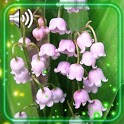 Forest Flowers Live Wallpaper icon
