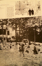 Photo: Jean and Paul Harris garden in the early days