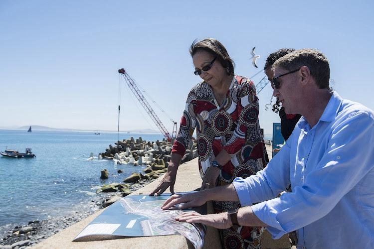 Big plans: Building desalination plants is one of the weapons in Cape Town's arsenal, driven by former mayor Patricia de Lille, but research says alien clearing could be more efficient. Picture: DAVID HARRISON/THE TIMES