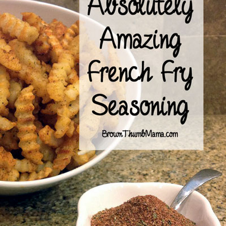 Amazing French Fry Seasoning