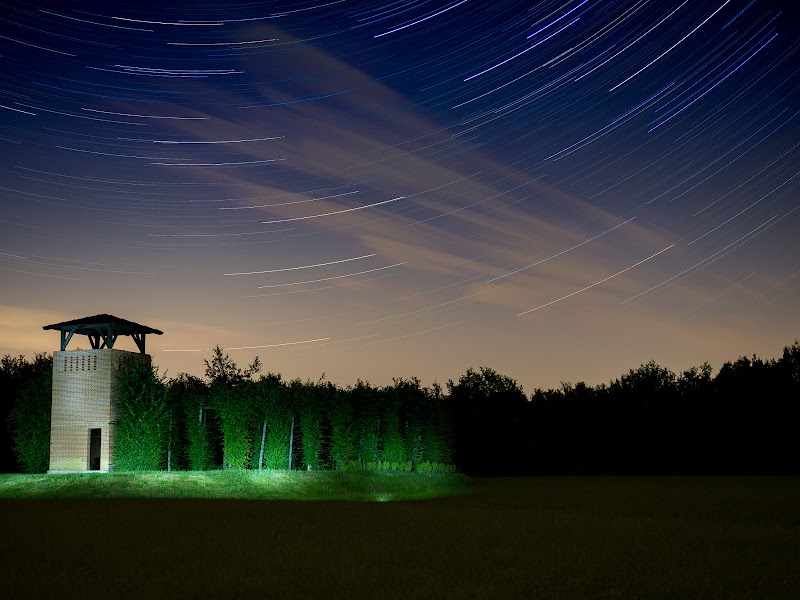star trails in the wood di Simone Candian