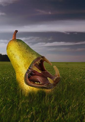 OGM di luciano s