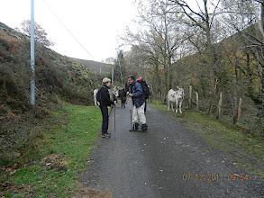 Photo: 405m Nous passons devant un bâtiment qui abrite des ânes, puis nous laissons un chemin sur la droite