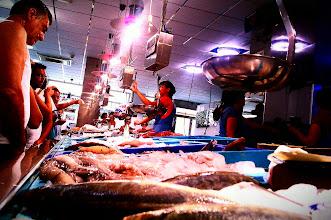 Photo: Pobres animalitos de mar