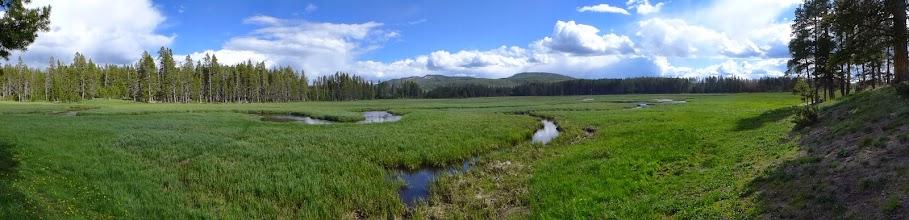Photo: Our campsite, Gibbon River
