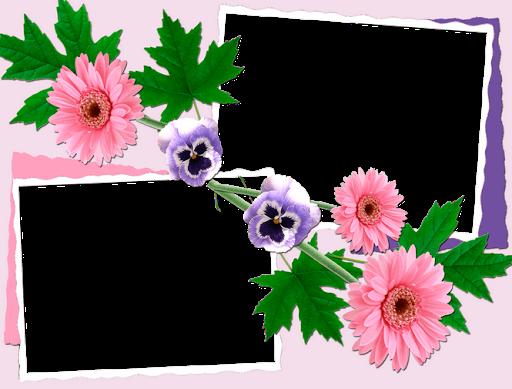 Cute Flowers Photo Frames
