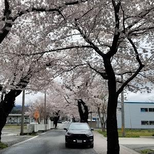 RAV4  アドベンチャー 2019 グレメタ TRDのカスタム事例画像 シゲちゃんさんの2020年04月19日19:06の投稿