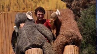 Bucking Broncos and Jiggling Monkeys