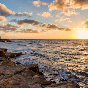 Land and Sea by Eddie Yerkish - Landscapes Sunsets & Sunrises ( shore, diego, sand, california, land, sea, ocean, seascape, beach, landscape, sun, coast, palm, san, sunset, outdoors, shoreline, trees, la jolla, rocks )