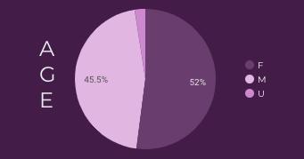 Age pie chart