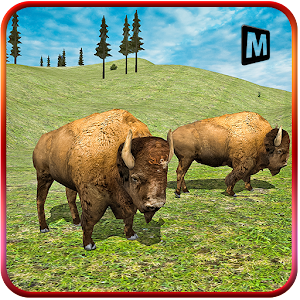 American Bison Simulator for PC and MAC