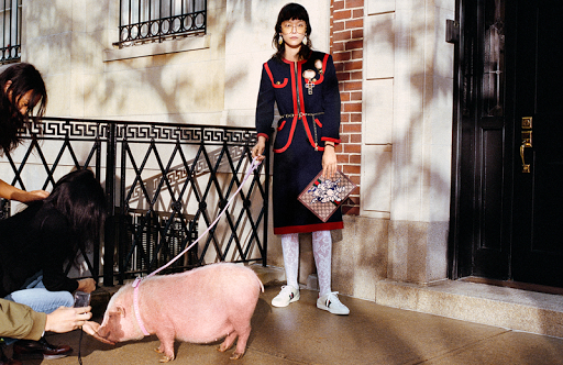 ed8b97ff24b Gucci Celebrates the Year of the Pig