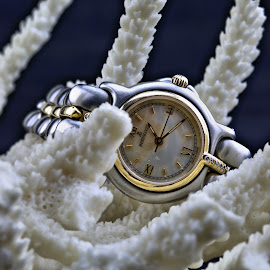 Bertolucci #1 by Cal Brown - Artistic Objects Jewelry ( woman, jewelry, artistic object, close up, wristwatch,  )