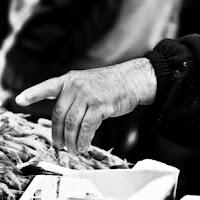 Fisherman finger di