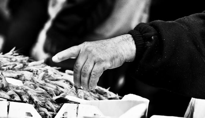 Fisherman finger di Giuseppeseya
