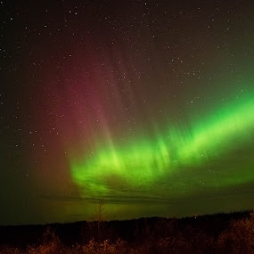 Mothers Day Solar Storm by Chase Maurine - Landscapes Starscapes ( aurora borealis )