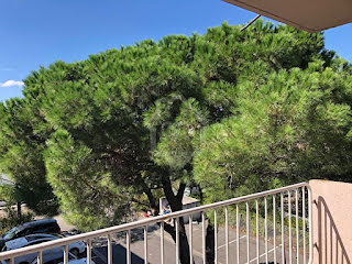 Appartement Beaucaire (30300)